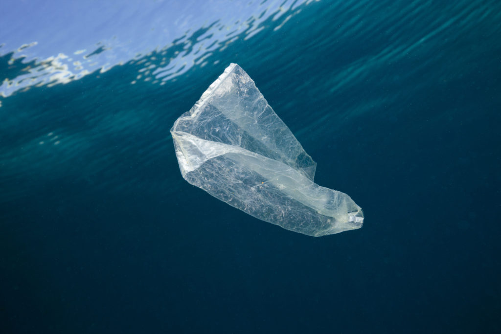 Plastic bag floating in the Indo-Pacific, near Indonesia. (PPR/Breitling/mauritius images/Reinhard Dirscherl)